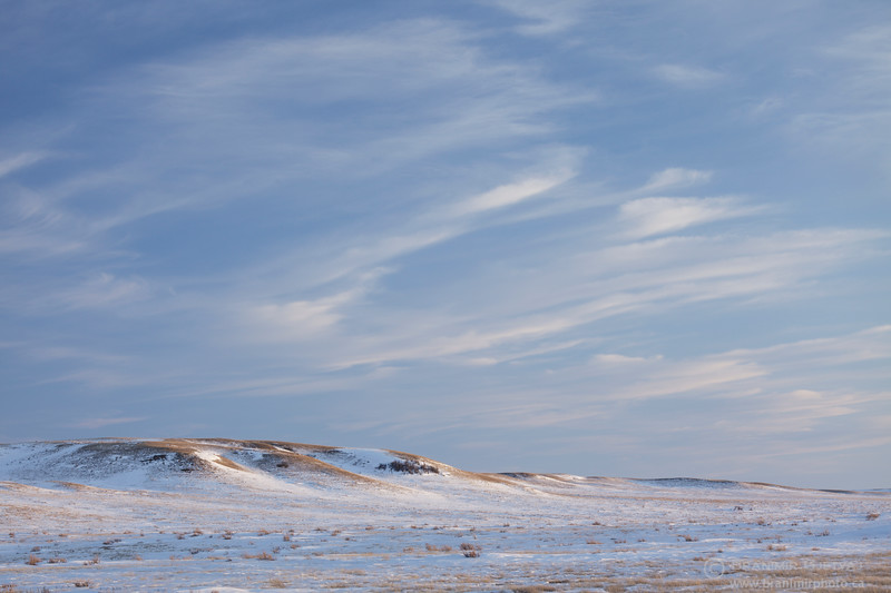 Winter prairie landscape. Grasslands National Park, Saskatchewan