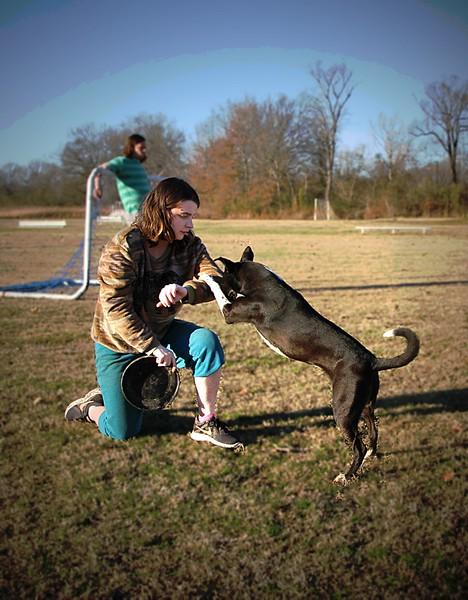 Amy dog training 2018