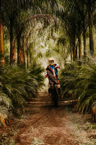 PalmsteadEdit-57.jpg