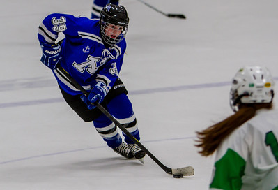 JV - Minnetonka vs. Edina (01/14/2013)