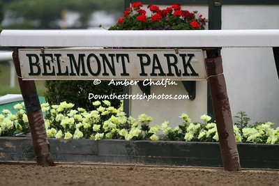 2015 Belmont Stakes Festival of racing
