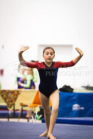 2011-2012 Women's Gymnastics