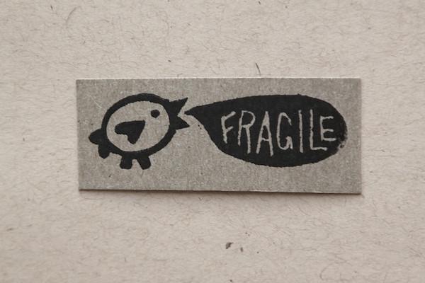 Fragile Bird.JPG