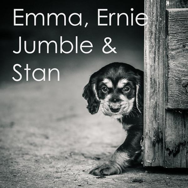Emma-Icons.jpg