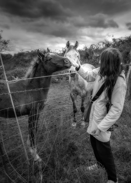 neni caballo.jpg