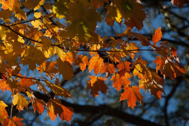 20121021-2012-10-2116-26-5713212.jpg