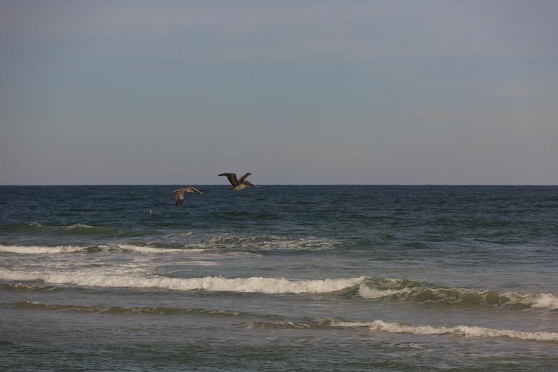 2014_10_24 Bald Head Island 029.jpg