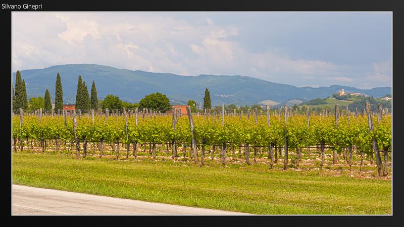 Friuli Journey 2019-09.jpg