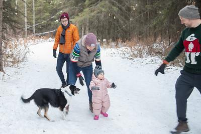 Winter walk Dec 2020