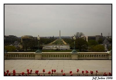 DC 2006