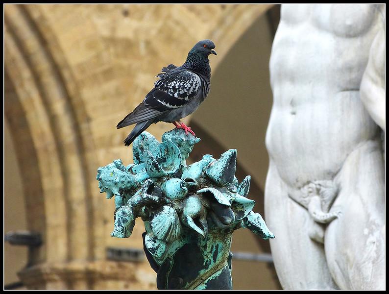 2012-05-Firenze-G135.jpg