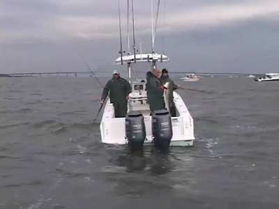 Fire Island Fishing Clips