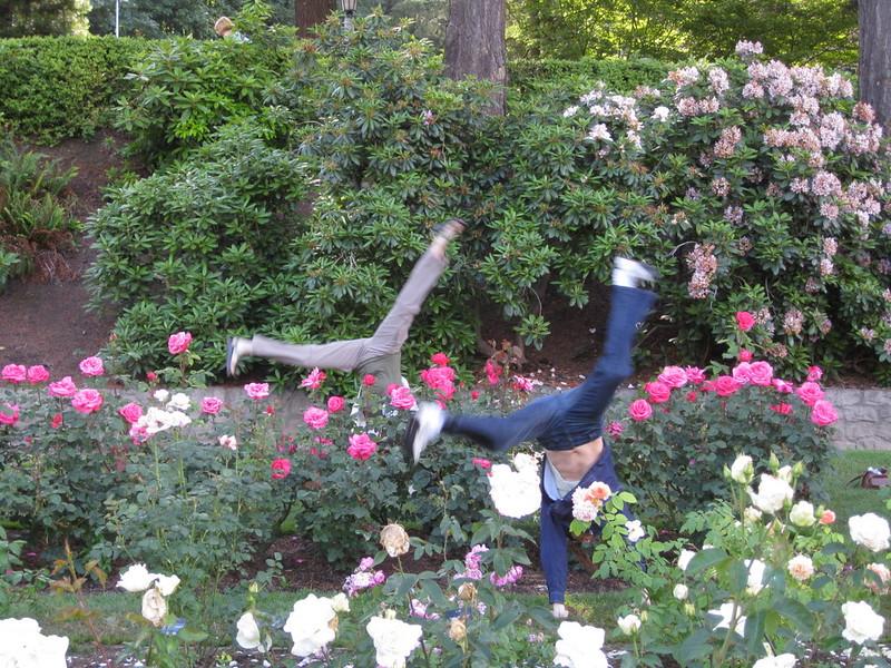 staceecalderon - rosegardensportlandor1.JPG