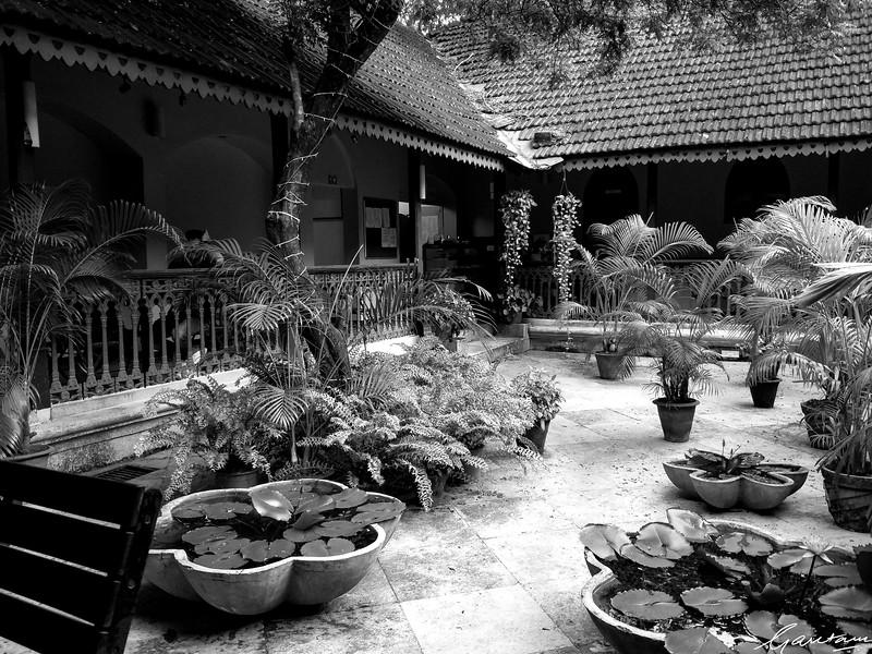 Café Bodega, Sunaparanta, Altinho, Panjim