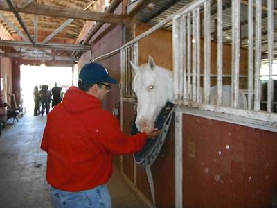 Horseback Riding Day Tour
