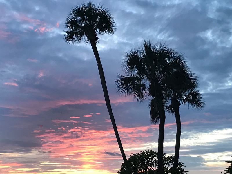 7_8_18 Indian Shores Sunset.jpg