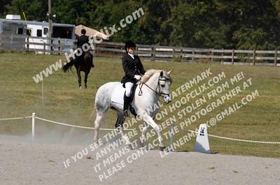 121014 USEA Horse Trial