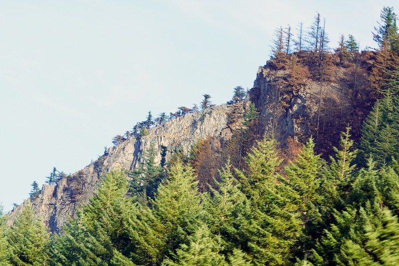 Eagle Creek Fire Damage  261.jpg