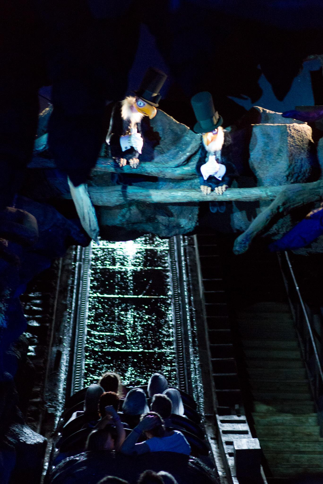 Splash Mountain Vultures - Walt Disney World Magic Kingdom
