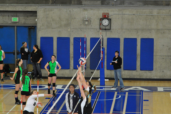Vibe-Stealth Volleyball 2012