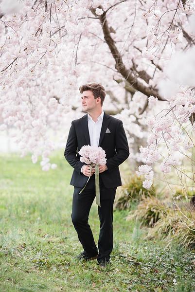 Cherry Blossoms (91 of 182).jpg