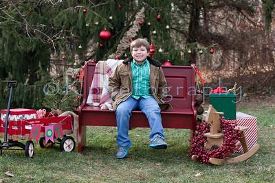 Schwartz Christmas 2013