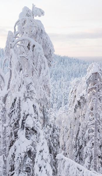 Alkuperäinen kuva on korkea ja suurikokoinen panoraama.