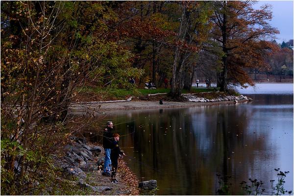 Ponds Fall 2019