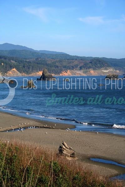 Oregon Coast_batch_batch.jpg