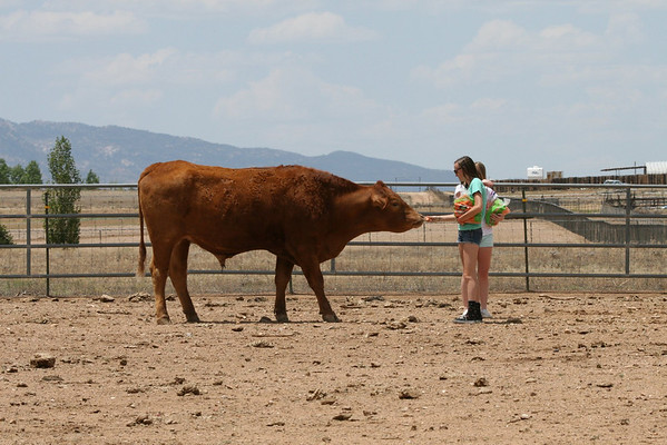 May '09: Prescott AZ - Circle L Ranch