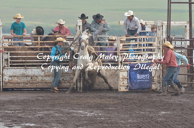 PERF SADDLE BRONC 07-05-15
