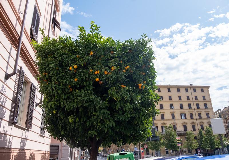 La Spezia-7.jpg