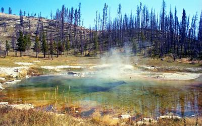 1992: August: Yellowstone