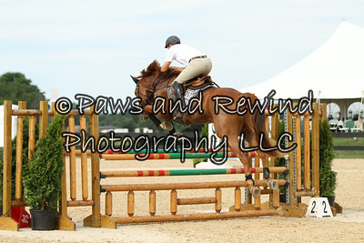 Wednesday Ring I: 5 Yr Old USEF Young Jumper