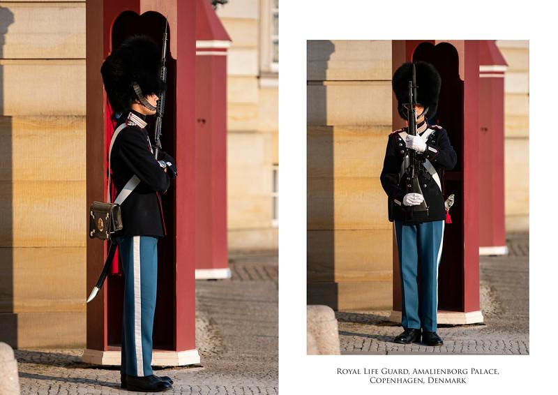 RoyalLifeGuard.jpg
