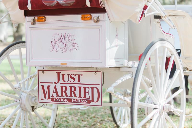 ELP0312 DeRoxtro Oak-K Farm Lakeland wedding-753.jpg