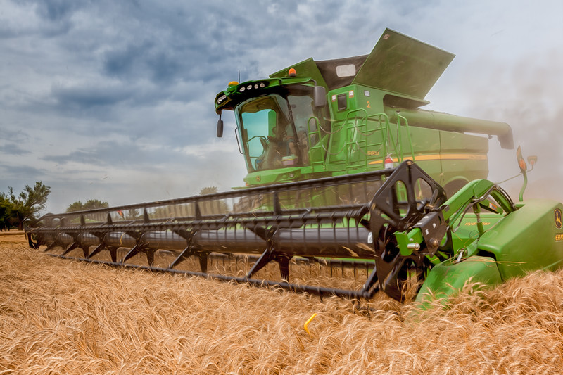 Wheat Harvest June 2014 13.jpg
