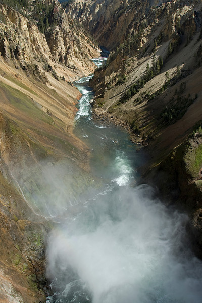 Grand Canyon of Yellowstone National Park