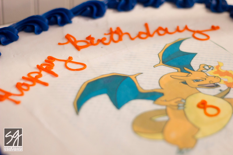 Childrens-birthday-party-photographer-charleston (182).jpg