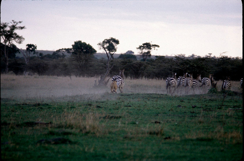 Kenya2_018.jpg