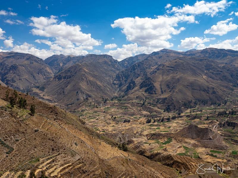 Peru-15102019-632.jpg