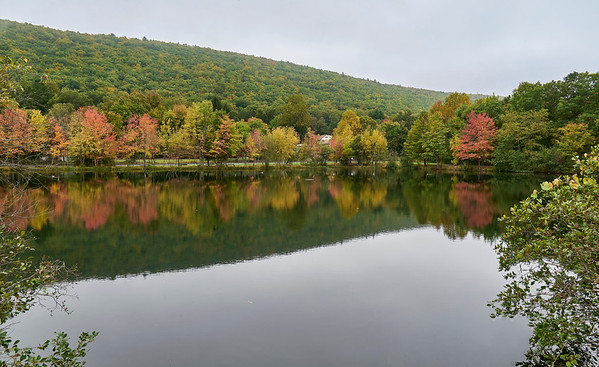 Fall Colors in NEPA, 10-5-21 (Z5)