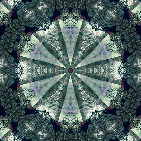10258_mirror7.jpg