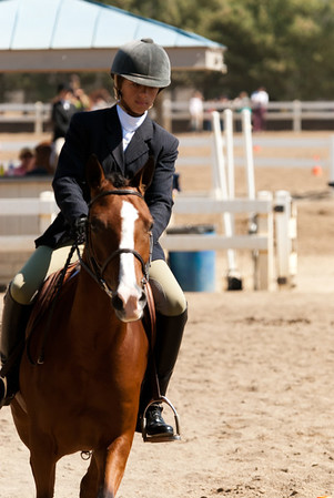 Class 36 - Hunter Equitation On the Flat, Large Pony, Sr. (16-19)