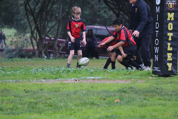 Rugby  01-17-2015