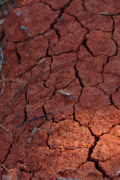 Cracked red soil of central oklahoma