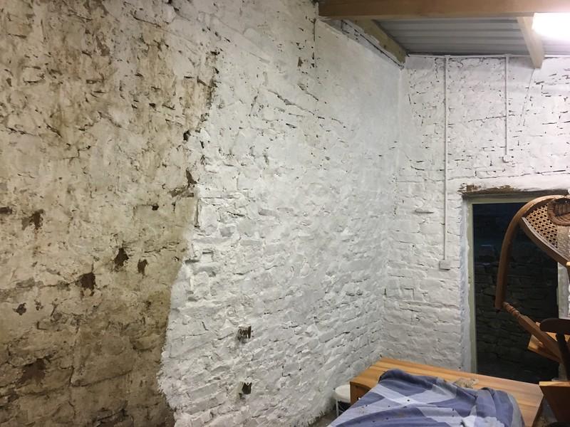barn wall (1).JPG