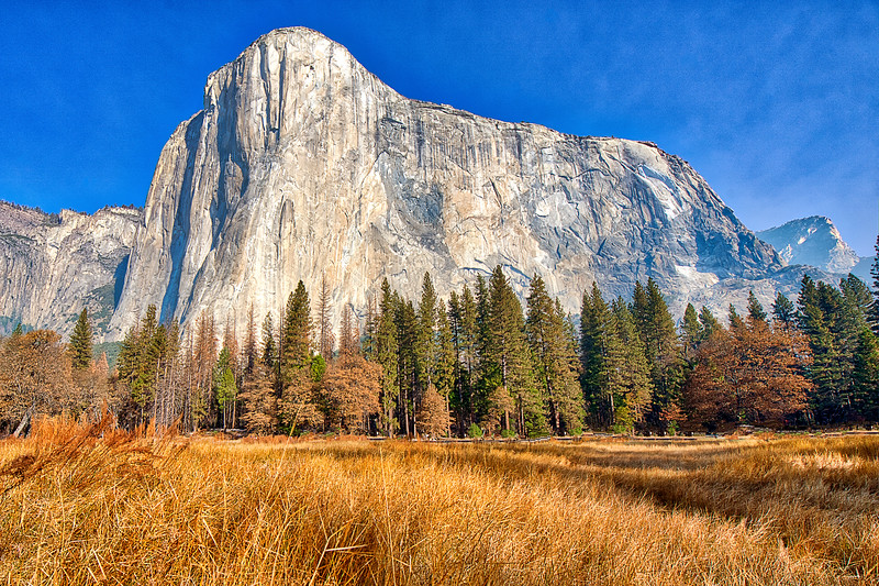 El Cap Meadow PS _DSC9718.jpg