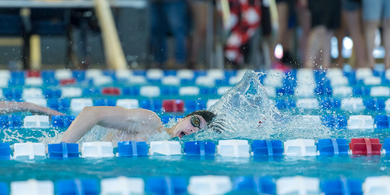 2018_KSMetz_Feb17_SHS Swimming_ State Finals_NIKON D5_5580.jpg