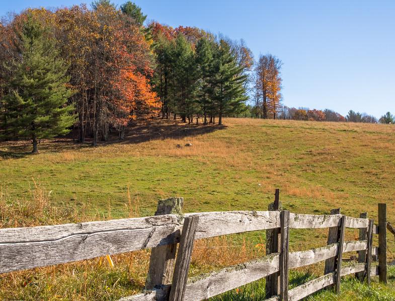 66 Nov 12 Fence (1 of 1).jpg